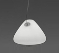 Artemide Capsule Suspension