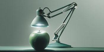 Jj Junior Lamp