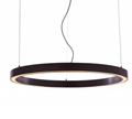 Viso Ring Pendant Lamp